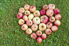 Heart from apples Stock Image