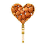 Heart with apricot pits. Heart shape made of golden zip, filled with apricot pits texture vector illustration