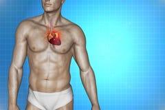 Heart attack concept. 3d illustration of human internal organs, heart, DNA stock illustration
