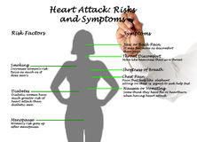 Heart Attack: Risks and Symptoms. Presenting diagram of Heart Attack: Risks and Symptoms Royalty Free Stock Images