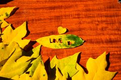 Heart in an autumn leaf on a background of grained wood.  Royalty Free Stock Image