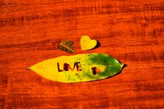 Heart in an autumn leaf on a background of grained wood.  Stock Photos