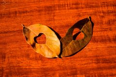 Heart in an autumn leaf on a background of grained wood.  Stock Image