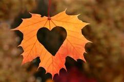 Heart in autumn leaf Stock Photos