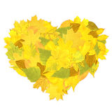 Heart from autumn leaves Royalty Free Stock Photography