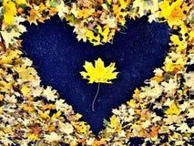 Heart from autumn leaves on asphalt Stock Photo
