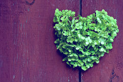 Heart  background of the fence. Green heart of flowers on a background of a wooden fence Royalty Free Stock Images