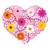 Heart Background With Gerbers. Vector Royalty Free Stock Image