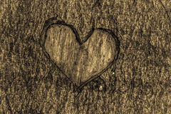 Heart in bark Stock Photography