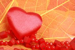 Heart and beads. Red heart and coral beads on leaves Royalty Free Stock Photo