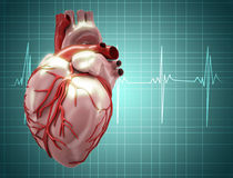 Heart beat on clinic monitor Stock Photos