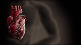 Heart and heart beat pulse video for medical apps and websites stock video
