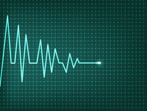 Heart beats cardiogram Stock Image