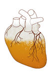 Heart with beer Royalty Free Stock Image