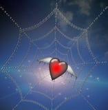 Heart in Binary Web Stock Photography