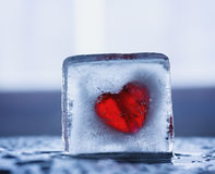 Heart in a block of ice. Frozen heart in a piece of ice Stock Image