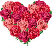 Heart of blooming roses. Heart of blooming rosse in vector Royalty Free Stock Images
