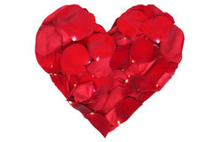 Heart from blossoms of red roses love topic on Valentine's and m stock image