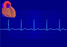 Heart& blue electrocardiogram 3 Royalty Free Stock Images