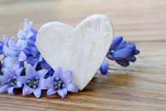 Heart and blue flower Royalty Free Stock Photography