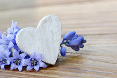 Heart and blue flowers Royalty Free Stock Image
