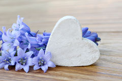 Heart and blue flowers Royalty Free Stock Photos