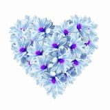 Heart Blue Light Flowers Royalty Free Stock Photos