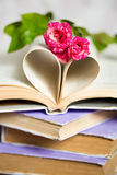Heart from book pappers Royalty Free Stock Photo