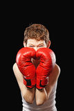 Heart boxing gloves Stock Photos