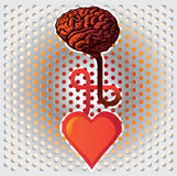 Heart and brain Stock Photography