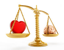 Heart and brain equality concept Royalty Free Stock Photo