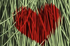 Heart of bristles Royalty Free Stock Photo