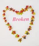 Heart Broken. Stock Photography