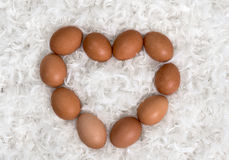 Heart from brown eggs on pile of white feathers Stock Photography