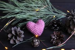 Heart and bumps. Pink heart on black background with spruce branch and bumps stock images