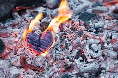Heart burns in the fire. Wooden heart was charred and the flames on the coals. The concept of strong love, burning passion, broken royalty free stock images