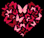 Heart of butterflies. Valentine day. Vector illustration. Butterflies on a black background Stock Photography