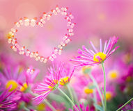 Heart of butterflies on a pink background with chrysanthemums Stock Images