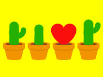 Heart and cactus in pots Royalty Free Stock Images
