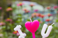 Heart candle in the flower garden Royalty Free Stock Images