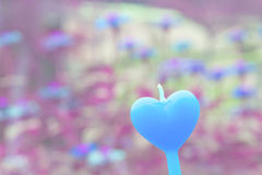 Heart candle in the flower garden vintage color Stock Images