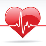 Heart with Cardiogram Stock Image
