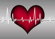 Heart and cardiogram Stock Photos