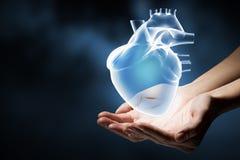 Heart care concept Stock Photo