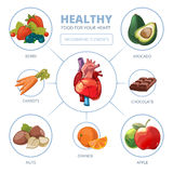 Heart care vector infographic. Healthy foods Stock Image