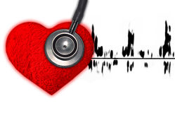 Heart check. By stethoscope on white stock photos