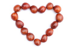 Heart of chestnut on white Stock Image