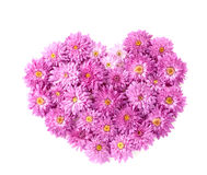 Heart from chrysanthemum flowers Royalty Free Stock Photography