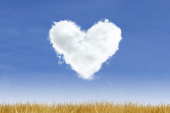Heart-Cloud on Blue Sky. Blue sky and heart shaped cloud over yellow grass Stock Image