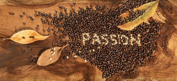A heart of coffee beans with dry leaves of magnolia Royalty Free Stock Photography